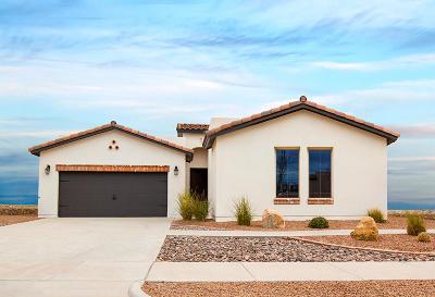El Paso Single Family Home For Sale: 1746 Larkleby Street