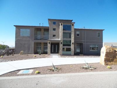El Paso Single Family Home For Sale: 1413 Via Quijano Lane