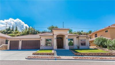 El Paso Single Family Home For Sale: 6464 Snowheights Court