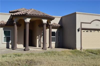 El Paso Single Family Home For Sale: 725 Al Smith
