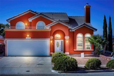 Vista Del Sol Single Family Home For Sale: 1425 Beethoven Place
