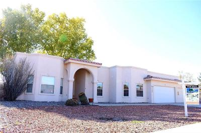 El Paso Single Family Home For Sale: 704 Camino Norte Court