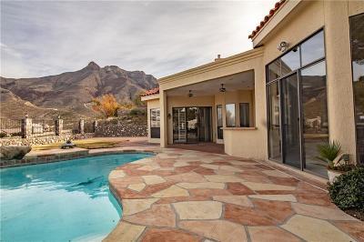 El Paso TX Single Family Home For Sale: $469,000