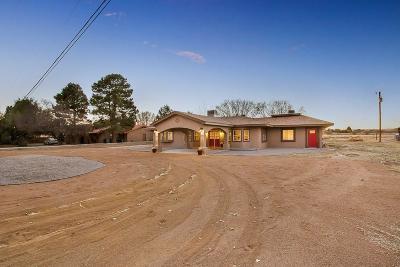 El Paso Single Family Home For Sale: 5645 Cory Drive