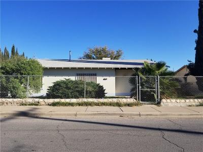 El Paso Single Family Home For Sale: 159 Gaspar Street