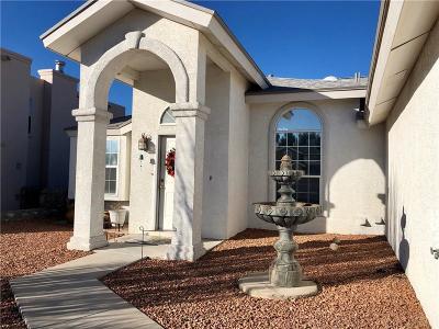 El Paso Single Family Home For Sale: 7033 Crown Ridge Drive