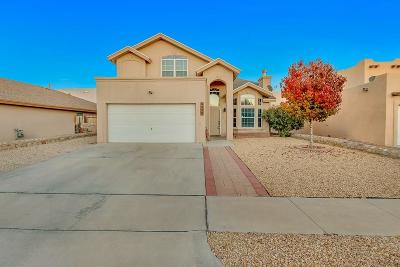 El Paso Single Family Home For Sale: 6420 Kenmore