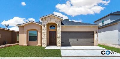 Single Family Home For Sale: 12016 Mesquite River Avenue