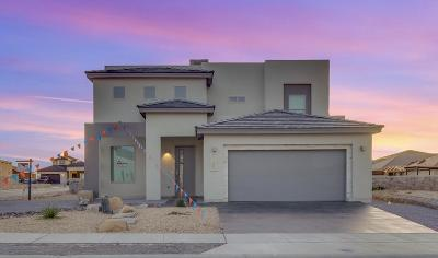 El Paso Single Family Home For Sale: 2189 Enchanted Summit Drive