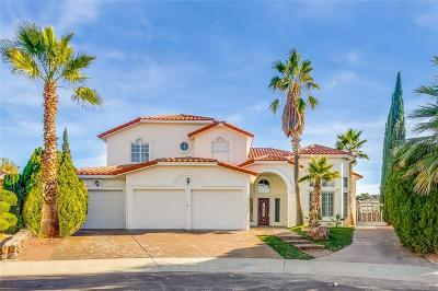 El Paso Single Family Home For Sale: 2010 Paseo Del Prado Drive