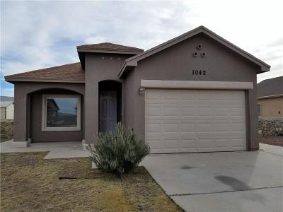 Socorro Single Family Home For Sale: 1042 Chris Forbes Circle