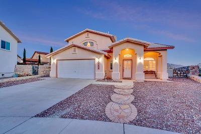 El Paso Single Family Home For Sale: 1604 Rey Del Sol