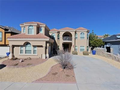 El Paso Single Family Home For Sale: 6351 Franklin Summit Drive