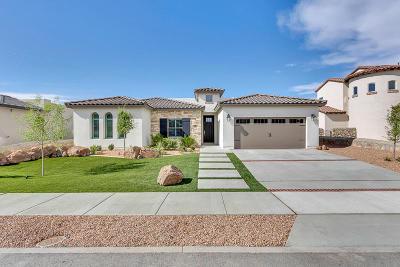 El Paso Single Family Home For Sale: 1289 Desert Night Street