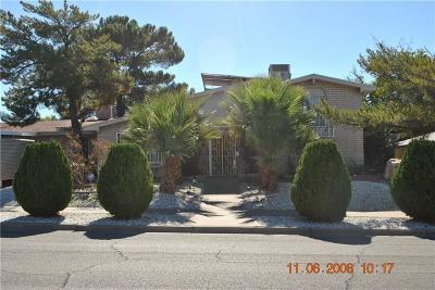 El Paso Single Family Home For Sale: 10208 Ridgewood Drive