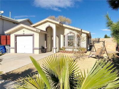 El Paso Single Family Home For Sale: 8662 Adriana Court