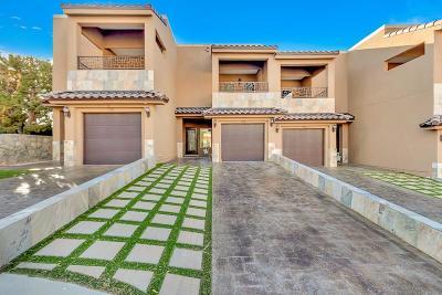 El Paso Single Family Home For Sale: 704 Espada Drive #B