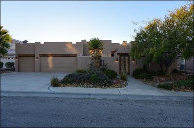 El Paso Single Family Home For Sale: 1043 Calle Flor Place