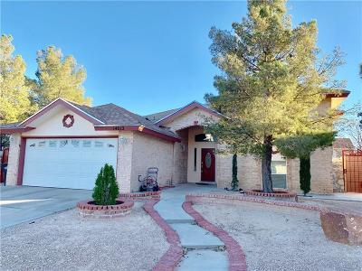 Horizon City Single Family Home For Sale: 14012 Tuckey Lane