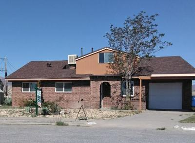 El Paso TX Single Family Home For Sale: $133,000