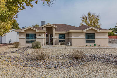 El Paso Single Family Home For Sale: 5652 Costa Blanca Place