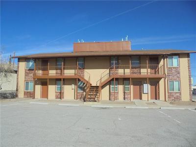 El Paso Multi Family Home For Sale: 3435 Fred Wilson Avenue #9