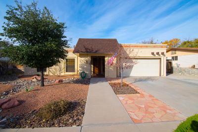 El Paso Single Family Home For Sale: 513 Queretaro Drive