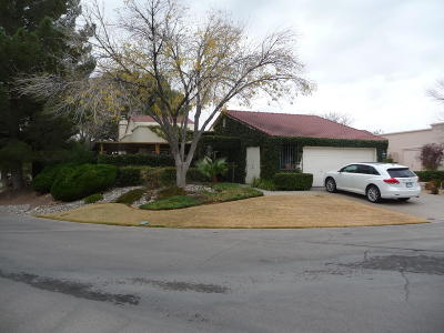 El Paso Single Family Home For Sale: 1102 Los Jardines Circle