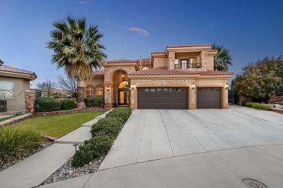 Single Family Home For Sale: 580 Pat Cruz Lane