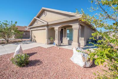 Horizon City Single Family Home For Sale: 14461 Desert Ocotillo Drive