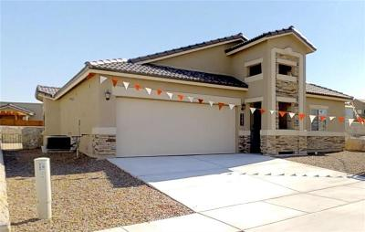 El Paso Single Family Home For Sale: 7821 Enchanted Circle Drive