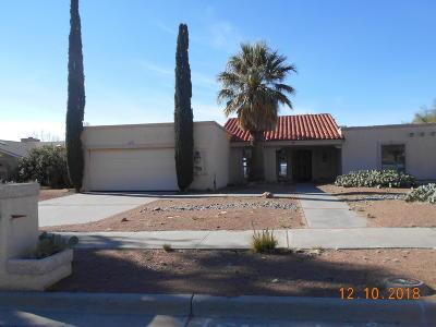 El Paso Single Family Home For Sale: 6453 Via Aventura Drive