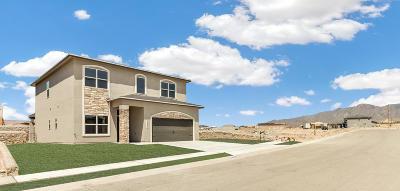 Single Family Home For Sale: 6941 Copper Town Avenue