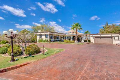 El Paso Single Family Home For Sale: 6101 Pinehurst