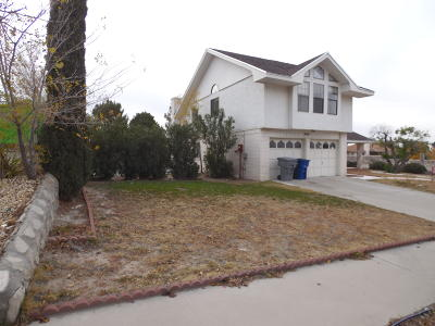 El Paso Single Family Home For Sale: 800 Hempstead Drive