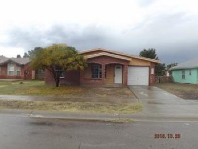 Horizon City Single Family Home For Sale: 119 Barrel Cactus Drive