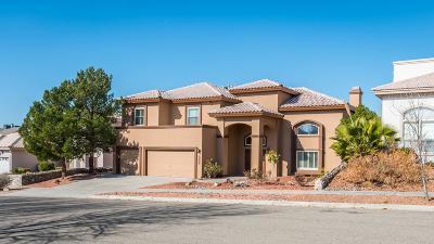 El Paso Single Family Home For Sale: 6517 Eagle Ridge Drive