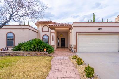 El Paso Single Family Home For Sale: 6805 Imperial Ridge Drive