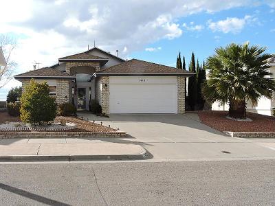El Paso Single Family Home For Sale: 1429 Black Ridge Drive