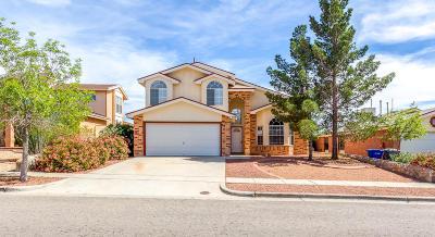 El Paso Single Family Home For Sale: 7308 Luz De Lumbre Avenue