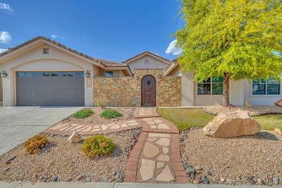 El Paso Single Family Home For Sale: 6341 Franklin Bluff Drive