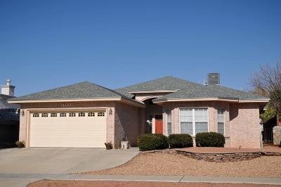 El Paso Single Family Home For Sale: 7353 Luz De Lumbre Avenue