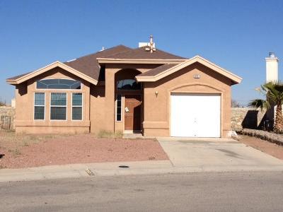 El Paso Single Family Home For Sale: 465 Valle Blanco Drive