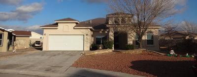 Horizon City Single Family Home For Sale: 768 Desert Star Drive