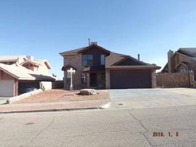 Single Family Home For Sale: 1468 Rebecca Ann Drive