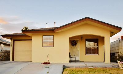 El Paso Single Family Home For Sale: 917 Madtone Drive