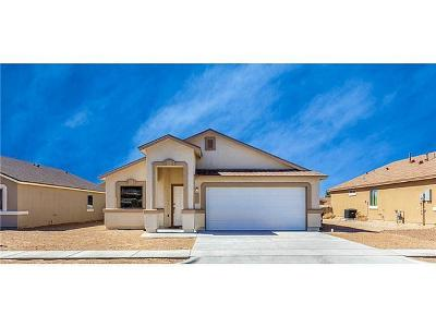 Socorro Single Family Home For Sale: 11514 Flor Gloriosa Drive