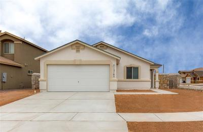 Single Family Home For Sale: 11531 Flor Gloriosa Drive