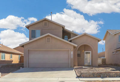 Single Family Home For Sale: 11888 Mesquite Rock Drive
