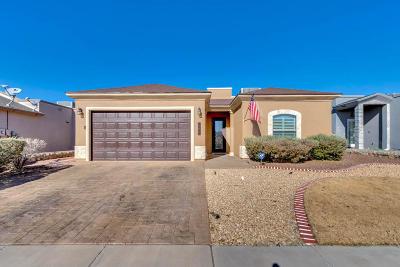 Single Family Home For Sale: 3069 Solar Point Lane